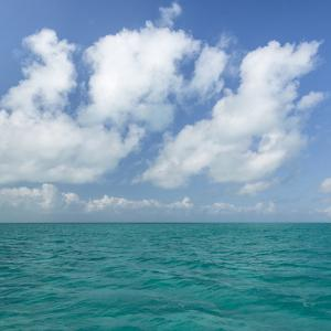 Tropical Seascape I by Kathy Mahan