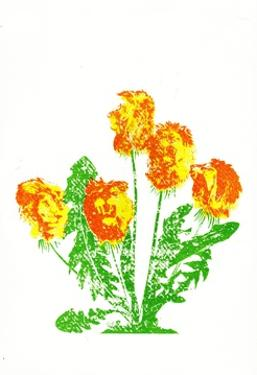 Dandelions by Katie Edwards