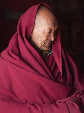 India, Ladakh, Likir, Senior Monk at Likir Monastery, Ladakh, India by Katie Garrod
