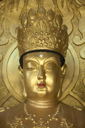 North Korea, Kaesong. a Gold Buddha at Ryongtong Temple. Founded by Chontae Buddhist Sect in 1027