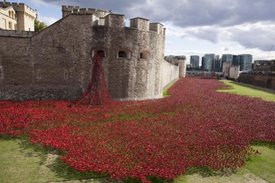 Uk, England, London. Blood Swept Lands and Seas of Red