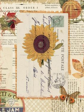 Falling for Fall II by Katie Pertiet