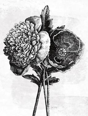 Spa Botanical III BW Crop by Katie Pertiet