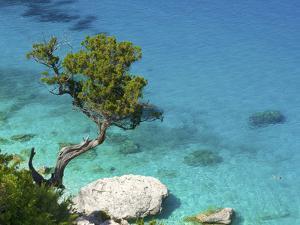 Cala Goloritze, Golfo Di Orosei, Parco Nazionale Del Gennargentu E Golfo Di Goloritze, Sardinia, It by Katja Kreder