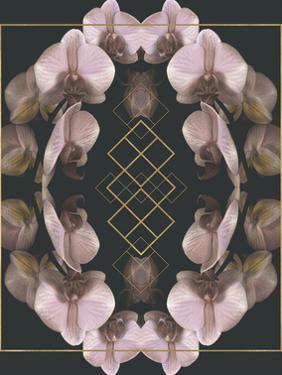 Tropical Mirrors by Katja Marzahn