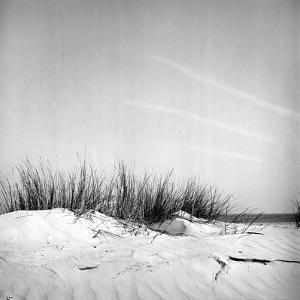 Baltrum Beach, no. 11 by Katrin Adam