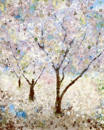 Cherry Blossoms II by Katrina Craven