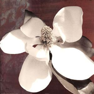 Magnolia Blue I by Katrina Craven
