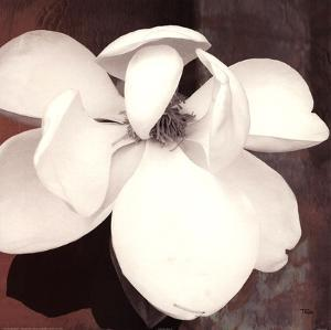 Magnolia Blue II by Katrina Craven