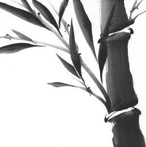 Ancient Essence II by Katsumi Sugita