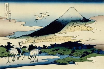 36 Views of Mount Fuji, no. 14: Umegawa in Sagami Province