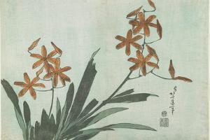 Blackberry Lilies, C. 1832 by Katsushika Hokusai