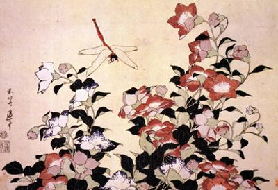 Katsushika Hokusai Chinese Bell Flowers and a Happy Dragon-fly Art Poster Print
