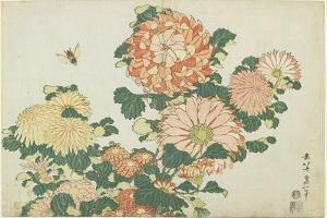 Chrysanthemums and Horsefly, C. 1832 by Katsushika Hokusai