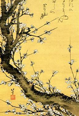 Katsushika Hokusai Flowering Plum Tree Art Poster Print