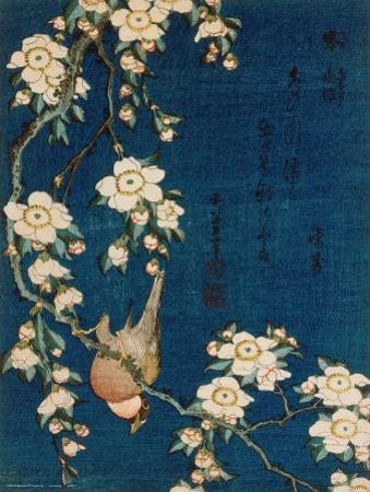 Goldfinch and Cherry Tree, c.1834 by Katsushika Hokusai