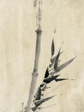 Japan: Bamboo, C1830-1850 by Katsushika Hokusai