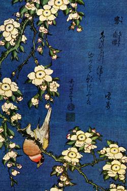 Katsushika Hokusai Bullfinch and Drooping Cherry Plastic Sign by Katsushika Hokusai
