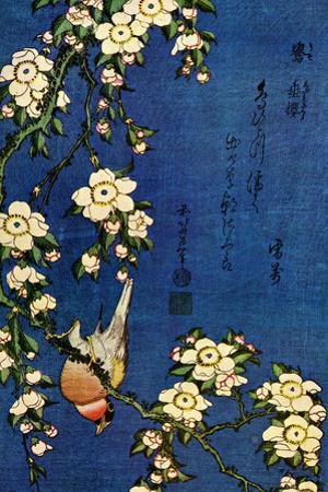 Katsushika Hokusai Bullfinch and Drooping Cherry