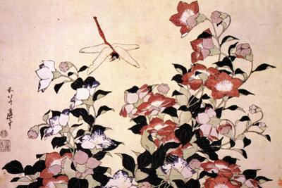 Katsushika Hokusai Chinese Bell Flowers and a Happy Dragon-fly Plastic Sign by Katsushika Hokusai