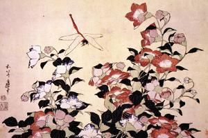 Katsushika Hokusai - Chinese Bell Flowers and a Happy Dragon-fly by Katsushika Hokusai