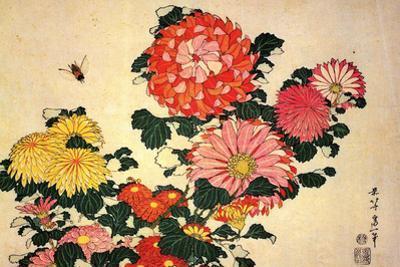 Katsushika Hokusai Chrysanthemums and a Bee by Katsushika Hokusai