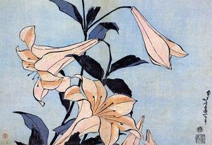 Katsushika Hokusai Lilies Art Poster Print