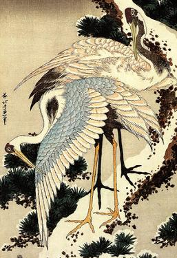 Katsushika Hokusai Two Cranes on a Pine Covered with Snow Art Poster Print
