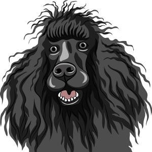 Black Smiling Dog - Poodle by kavalenkava volha