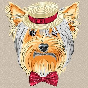 Vector Funny Cartoon Hipster Dog Yorkshire Terrier by kavalenkava volha