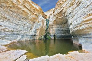 Canyon Ein Avdat in Israel. Sandstone Canyon Walls Form a round Bowl. Thin Jet Waterfall Form Cold by kavram