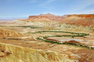 Negev Desert. Creek Meanders through the Picturesque Wilderness and Marked Bright Green Vegetation by kavram