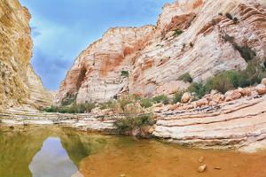 Picturesque Canyon Ein-Avdat in the Negev Desert. Clean Cold Water in the Creek Canyon. Sandstone W by kavram
