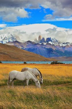 The Landscape in the National Park Torres Del Paine, Chile. Lake Laguna Azul in the Mountains. on T by kavram