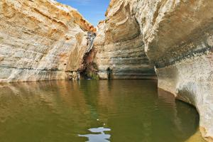 Unique Canyon in the Desert. Picturesque Canyon Ein-Avdat in the Negev Desert. Sandstone Canyon Wal by kavram