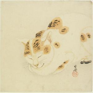 Sleeping Cat by Kawanabe Kyosai