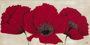 Linen Poppies I by Kaye Lake