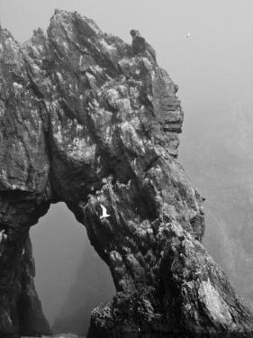 Bear Island, Norway by Keenpress