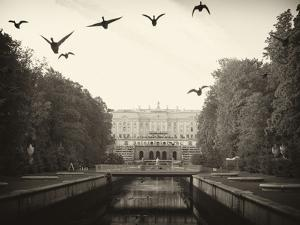 Ducks Fly Along the Canal in Front of Paterhof by Keenpress