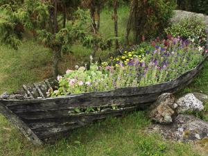 Old Wooden Boat Used as a Flower Planter by Keenpress