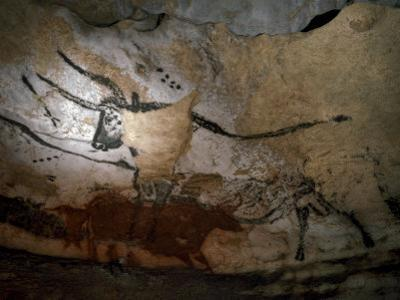 Paleolithic Art of Bulls on Calcite Walls of Lascaux Cave by Keenpress