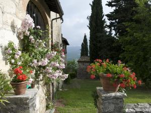 Tuscan House with Roses and Pelagonier in the Gardens by Keenpress