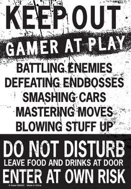 Keep Out Gamer At Play…
