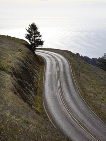 A Road in Mount Tamalpais State Park with a View of the Pacific Ocean in the Distance by Keith Barraclough