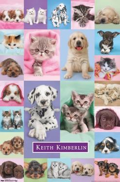 Keith Kimberlin - Puppies and Kittens