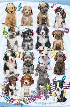 Keith Kimberlin Puppy Headphones