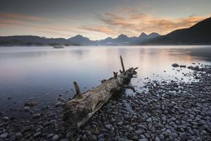 A Log on the Edge of a Lake in Montana's Glacier National Park by Keith Ladzinski