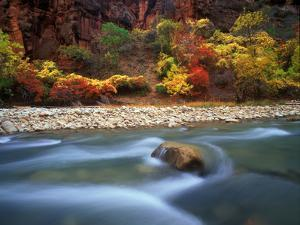 A River Rushing Past Tall Cliffs and Trees in Autumn Hues by Keith Ladzinski