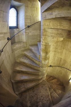 A Spiral Staircase by Keith Ladzinski