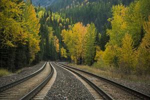 Railroad Tracks Through Autumn-Colored Trees by Keith Ladzinski